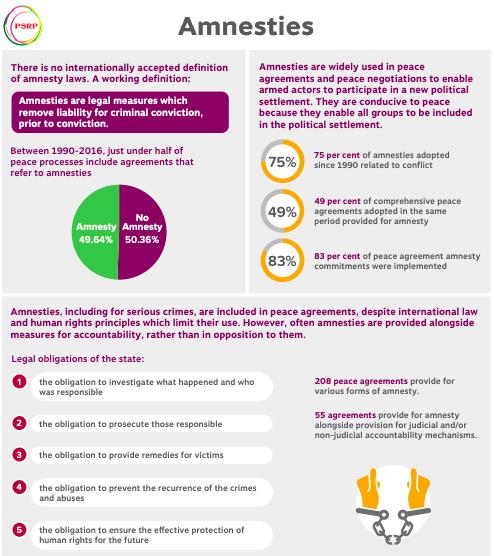 Amnesties Infographic